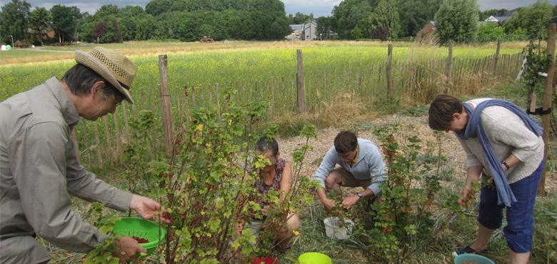 9 initiatives inspirantes : Jardin'Ages