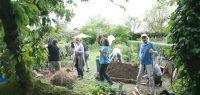 Formation Terre & Conscience en Agroécologie humaniste