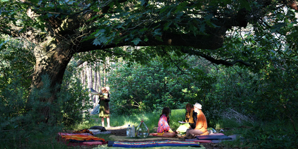 [Cycle Arbre 8/8] L'arbre et les humains : quel est notre devenir ?