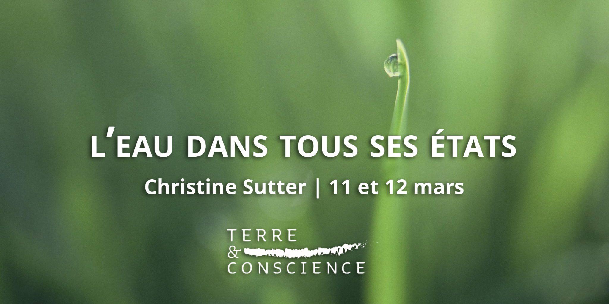 Christine Sutter : l'eau dans tous ses états